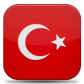 Google Translation: Turkish for v4